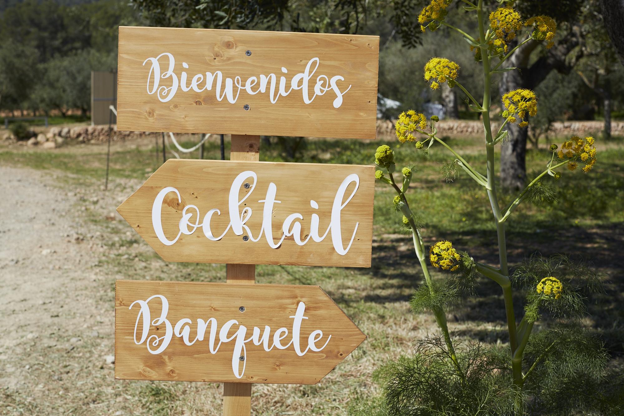 A y J La boda entre olivos en Ibiza.